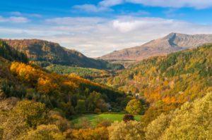 Lledr Valley in Autumn